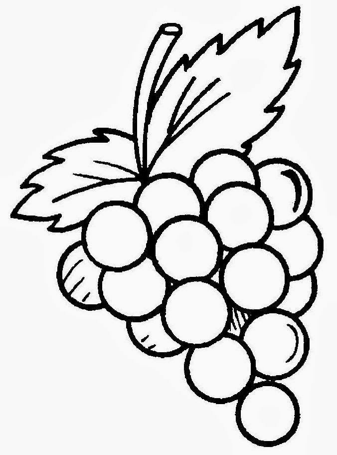 resultado de imagem para desenhos de cachos de uvas caixo de uva
