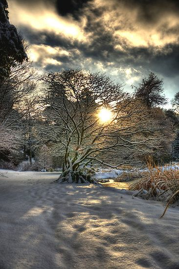 A county Down Winter Scene by Jonny Andrews. County Down, Northern Ireland
