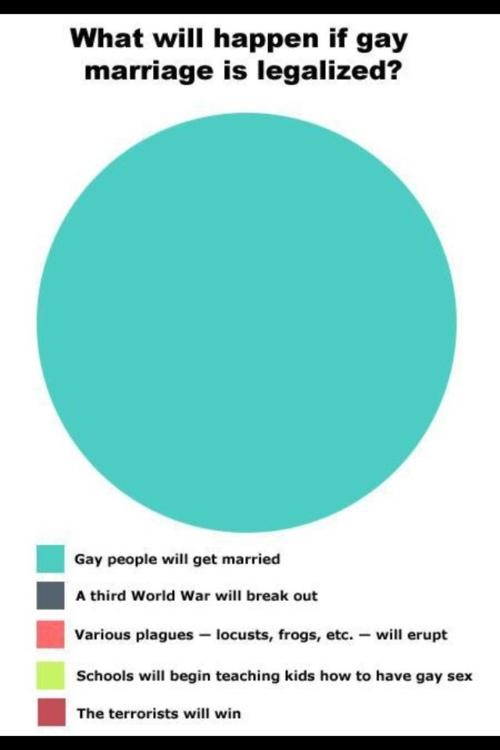 What will happen if gay marriage is legalised: Gay Marriage, Equalright, Gaymarriage, Equality Rights, Common Sen, Pies Charts, Truths, So True, True Stories
