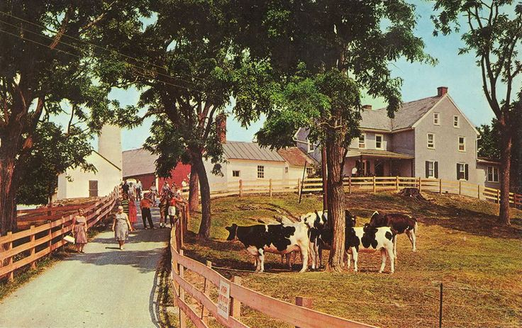 The Amish Homestead - Look for the Orange Milk Cans at Entrance - This beautiful and scenic 71 acre farm dates back to 1744 and is occupied by an Old Order Amish Family using horses and mules.