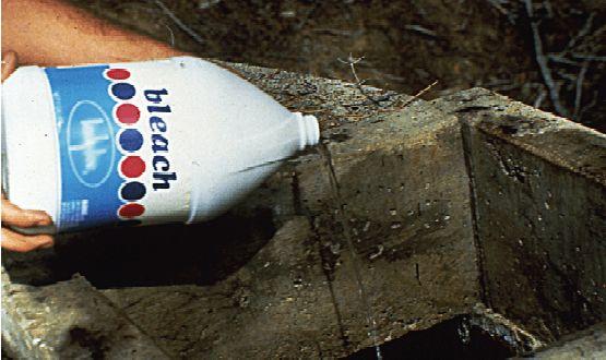 Foraje puturi apa - clorinare
