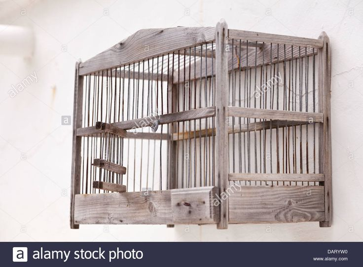 Google Image Result for http://c8.alamy.com/comp/DARYW0/old-wooden-bird-cage-hanging-empty-on-a-whitewashed-wall-DARYW0.jpg
