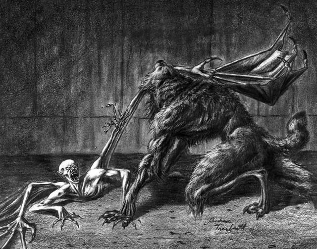 29 best images about vampire vs werewolf on pinterest