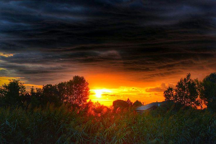 #follows me,#sunset,#redsky,#outdoor,#nature