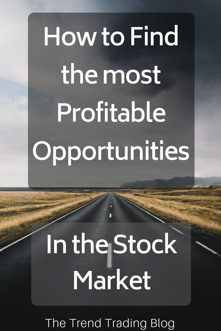 In This Article Discover How To Find The Most Profitable