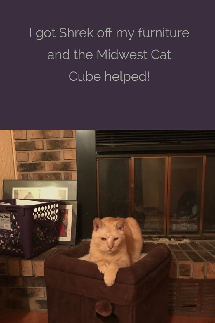Thank you Midwest Cat Cube!  Now I can buy that new couch!
