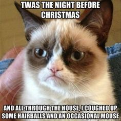 Twas The Night Before Christmas christmas quotes funny christmas holiday humor funny christmas quotes christmas memes grumpy cat memes christmas image quotes christmas quotes with images christmas images with quotes christmas funny quotes quotes of christmas funny christmas memes christmas meme images