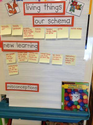 Chalk Talk: A Kindergarten Blog: living and non-living