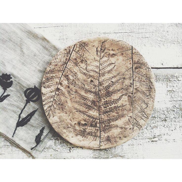 Я-обожатель папоротника😻🌿Нахожу это растение невероятно красивым и таинственным,самым-самым лесным из лиственных.Папоротник,наверняка,многое повидал,если учесть насколько он древний.Умные люди утверждают,что это растение появились на земле более 400 миллионов лет назад🙈Представляете?В ту непредставимо далекую эпоху всю землю покрывали густые леса из огромных папоротников✨Сейчас они, конечно,обмельчали и уже не встретишь папоротник размером с дерево,но это никак не влияет на его волшебную…