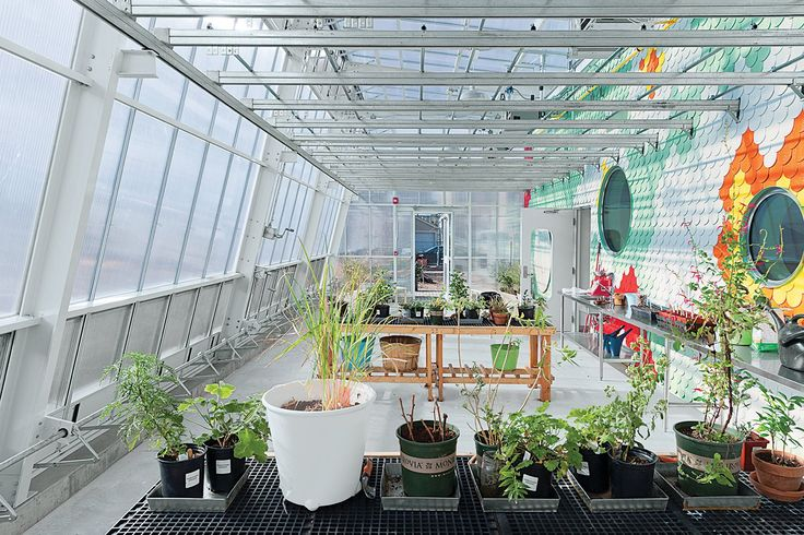 11 Innovative and Modern Schools Where Creativity and Good Design Rule - Photo 1 of 11 - Pioneering chef Alice Waters's Edible Schoolyard programs has now spread to all 50 states. This one at P.S. 216 in Brooklyn opened in December 2013. WORKac, the New York architectural office of Amale Andraos and Dan Wood, designed the glowing structure with raised beds, a greenhouse, chicken coop, cistern, and an indoor kitchen classroom. It even channels runoff rainwater from its roof for reuse in its…