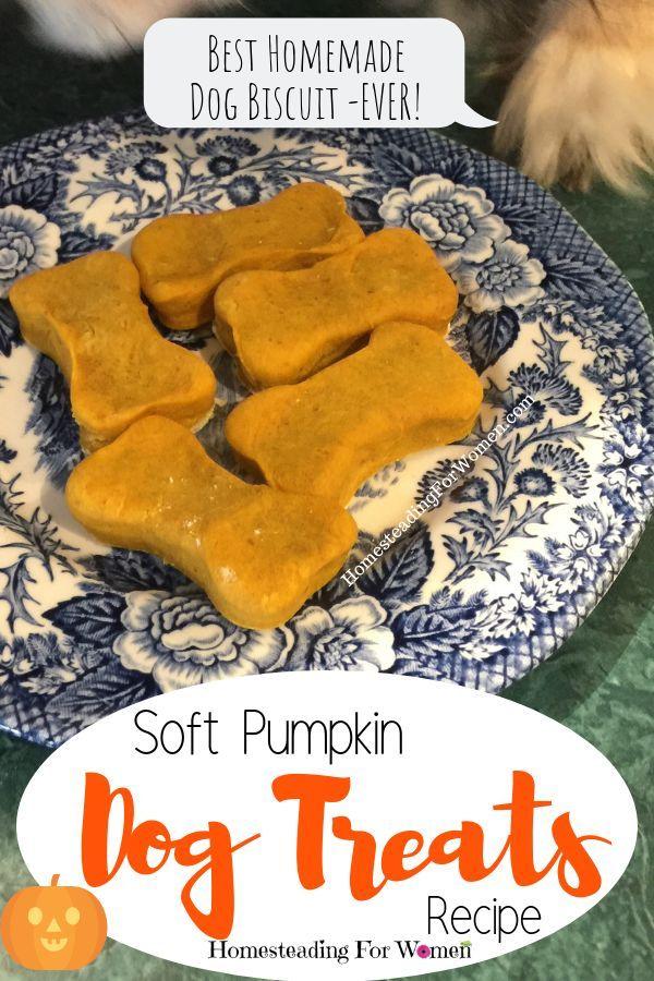 Soft Pumpkin Dog Treats Best Homemade Dog Biscuit Recipe Ever