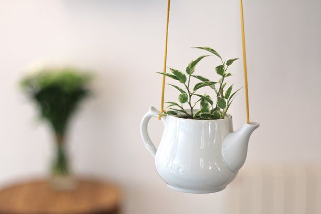 Tuto : une plante suspendue dans une théière en céramique 7