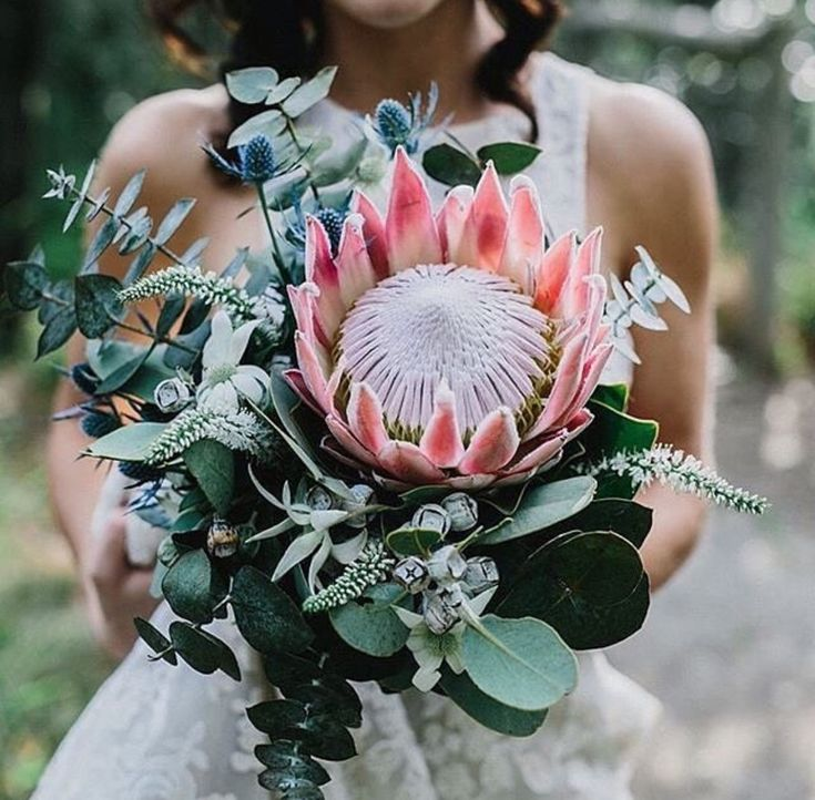 All these flowers and greens. T likes. These kinds of greens (ferns and whatever else) and protea in this color + lilacs? + ranunculus? + plus those little purple ball things with the hair.