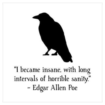 "Crows Ravens:  #Raven ~ ""I became insane, with long intervals of horrible sanity.""  ---Edgar Allan Poe."