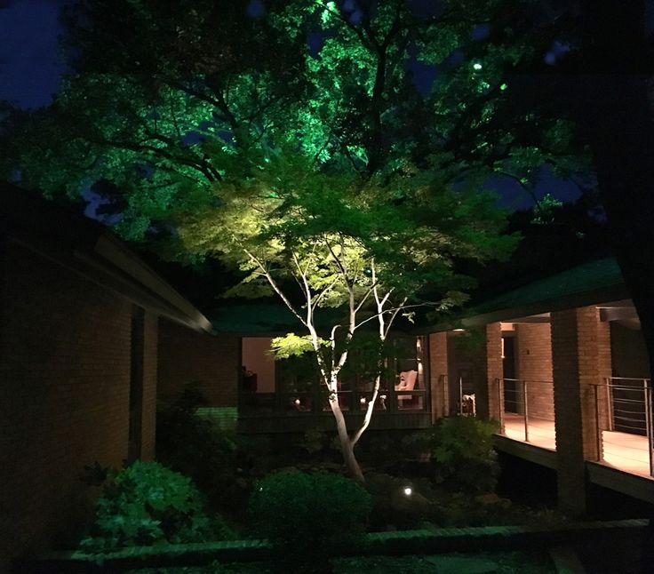 46 best Moonlighting Installations by Dallas Landscape Lighting images on Pinterest | Landscape lighting Moonlight and Dallas  sc 1 st  Pinterest & 46 best Moonlighting Installations by Dallas Landscape Lighting ... azcodes.com