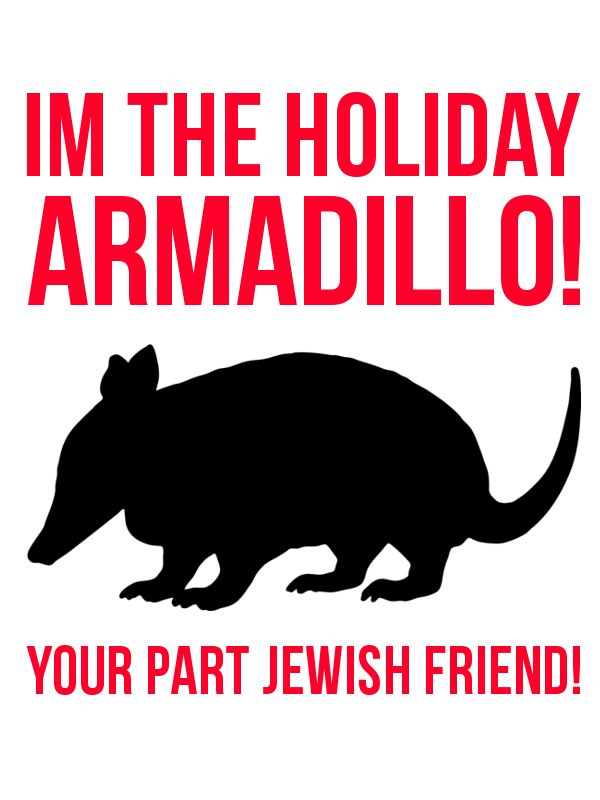 Holiday Armadillo! Love this Friends episode :)