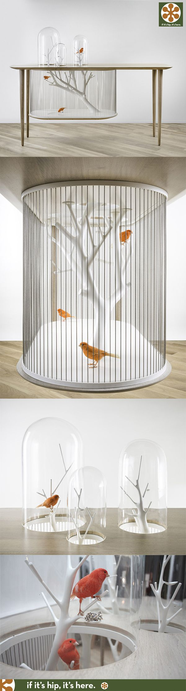 The Archibird is a combination functional birdcage and wood console table. Fabulous!