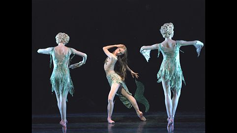 The American Museum of Natural History comes to life with a delightful performance by the New York City Ballet.  http://www.nycballet.com/Ballets/C/Carnival-of-the-Animals.aspx