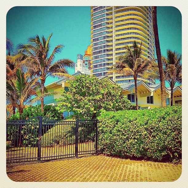Miami South Beach - @balazsroth photographer - #webstagram