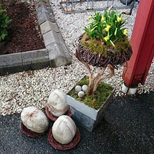 Påske, egg, betong,  påskelilje,  mose, reir, rede, fjær, easter,  concrete,  drift wood,  nest,  diy,  moss
