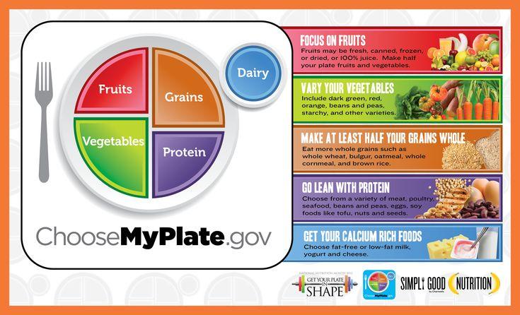 """Ernährungsempfehlungen """"My Plate"""