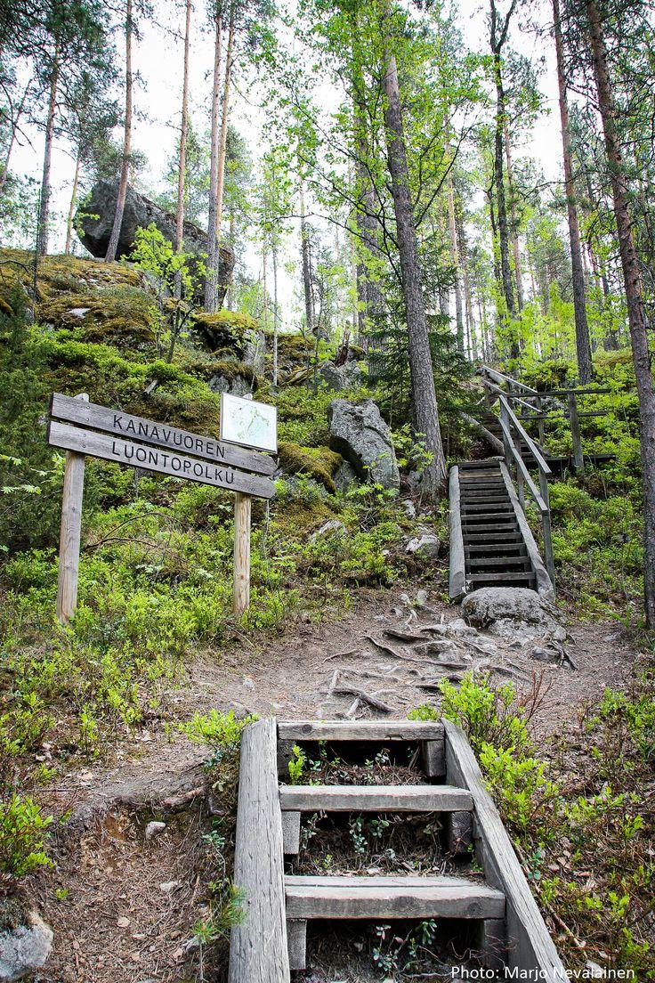Kanavuori nature trail. Photo: Marjo Nevalainen.