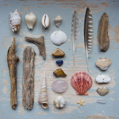 photo project for all my beach finds i've collected over the years photo by Anja Mulder