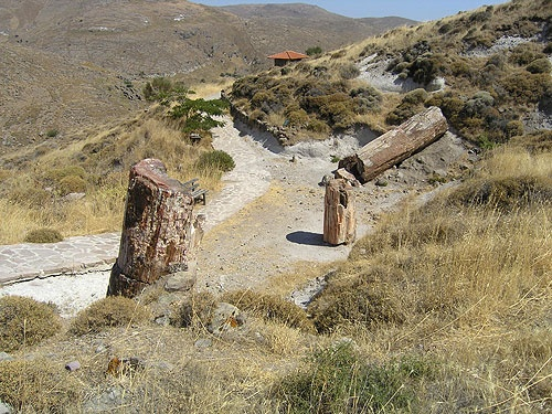 Petrified Forest of Lesbos The Landscape