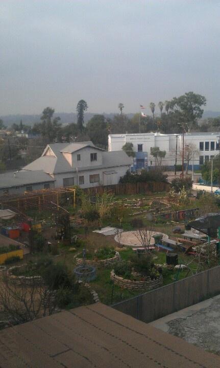 Cool community garden.