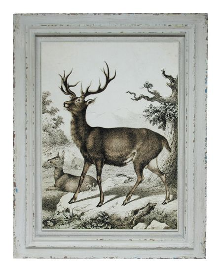 The Elk Frontview Wall Art from Urban Barn is a unique home décor item. Urban Barn carries a variety of Wall Art & Decor and other  products furnishings.