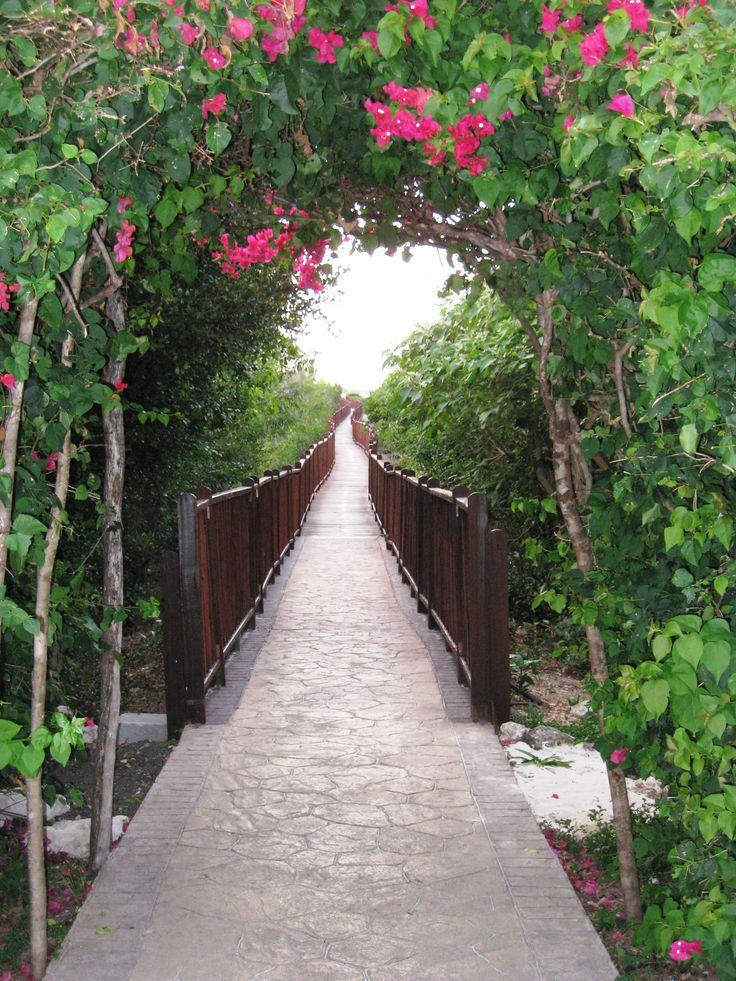 Walkway to Megano Beach, Iberostar Ensenachos