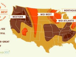 Fabulous for Fall Foliage Freaks! Fall Foliage Map : Fall : Travel Channel #TravelChannel