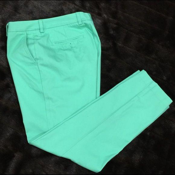 Mens Vineyard Vines Cotton Pants Mens mint green pants, worn once to Kentucky derby. Size 33x30 Vineyard Vines Pants Straight Leg
