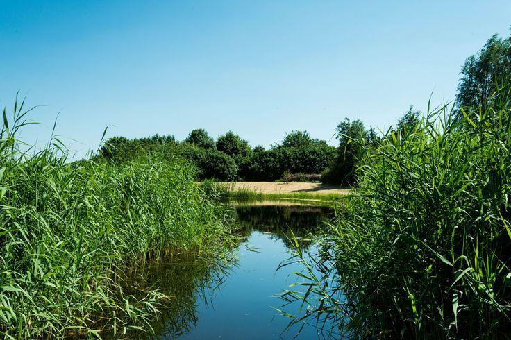 Natuurlijk landschapspark met natuurlijke vijver | by Buro Buitenom
