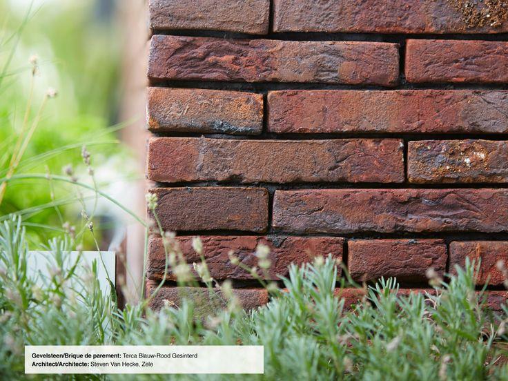 Gevelsteen / Brique de parement: Terca Blauw-Rood gesinterd Architect / Architecte: Steven Van Hecke, Zele
