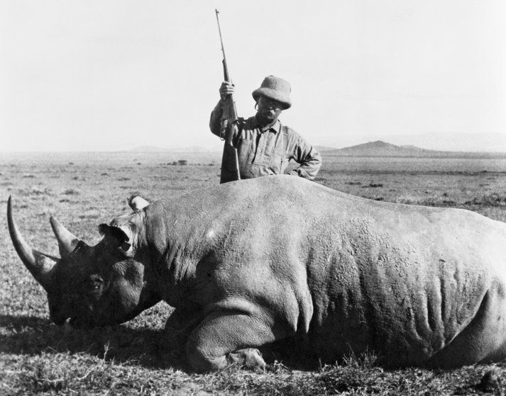 Image result for theodore roosevelt safari trip