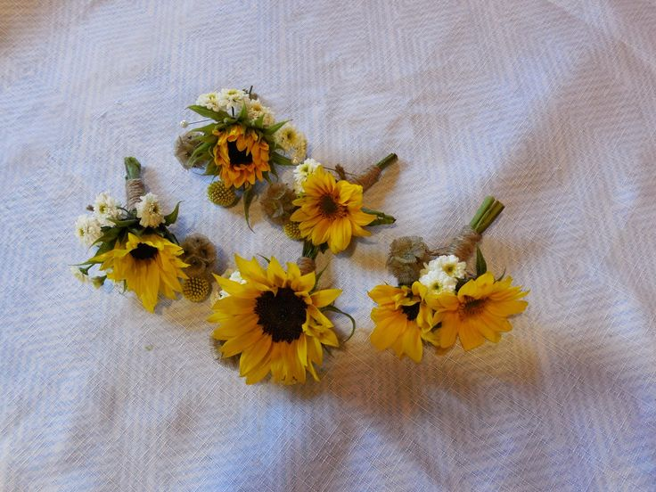 Sunflower bout's