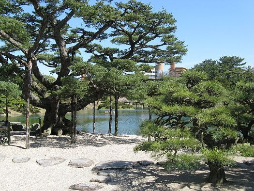 Japanese Pine Trees Tower Over Rock Garden At Takamatsuu0027s Ritsurin Park By  Manmaru (Wikipedia)