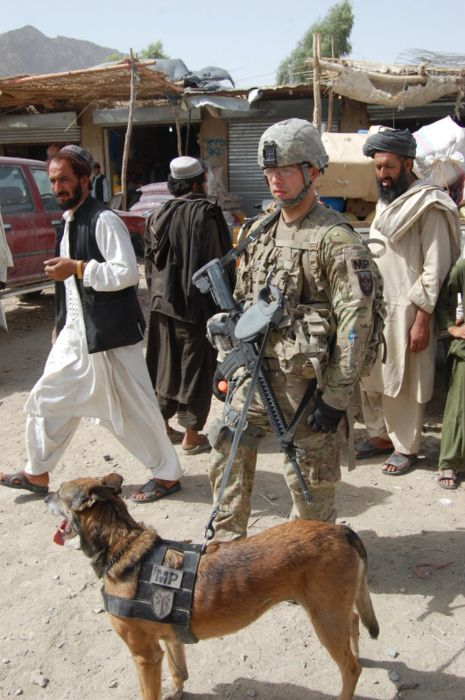 Staff Sgt. Carl, military working dog, with Sgt. Robert Citrullo, Kandahar