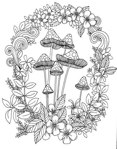 204 best adult colouringmushrooms toadstools