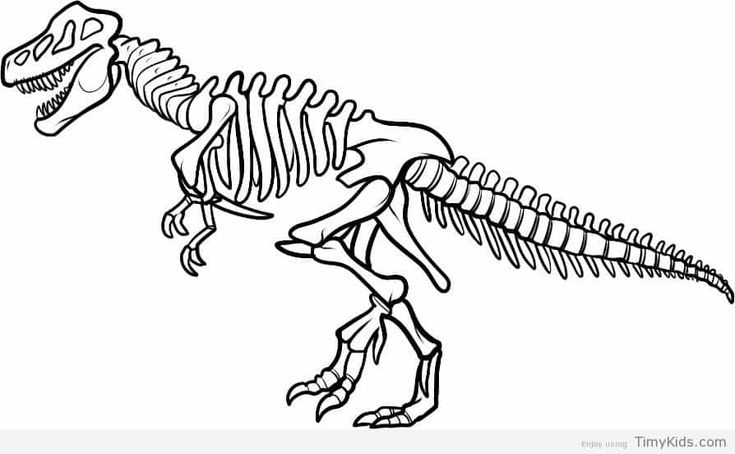 realistic dinosaur bones coloring pages coloring in 2019 dinosaur coloring pages dinosaur. Black Bedroom Furniture Sets. Home Design Ideas