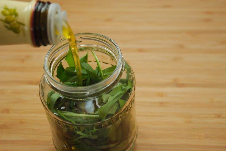 Medvehagymás olaj recept: hónapig lehet csak hozzájutni, azonban ezzel a módszerrel egész évben tudjuk élvezni az ízét. Továbbá nem csak a medvehagyma levelével tudjuk ízesíteni az ételeinket, hanem az olaj is rendkívül jól felhasználható saláta öntetként.