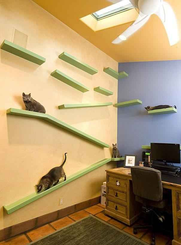 Okay, I'm currently Googling this company because I NEED this office: | A California Man Has Created A Cat's Dream Home