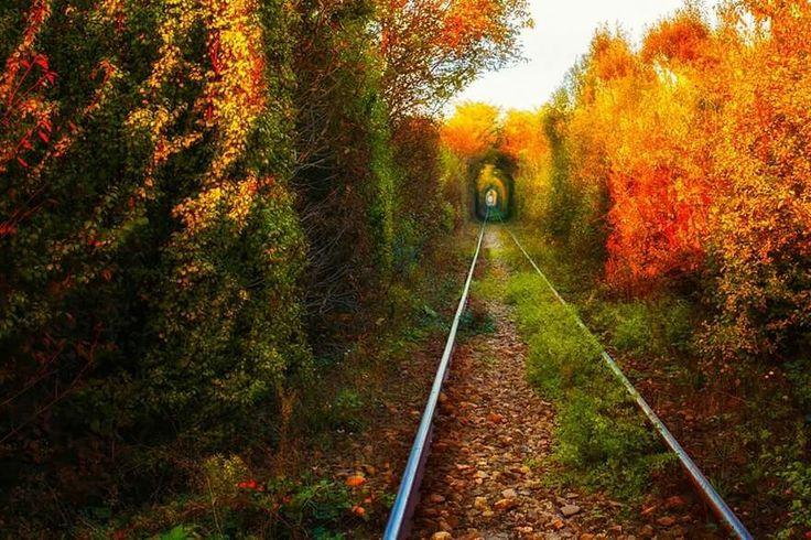 Banat Love Tunnel