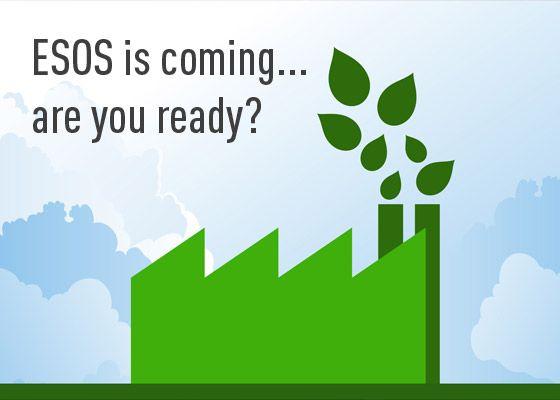ESOS - DO YOU QUALIFY? - The Green Journey