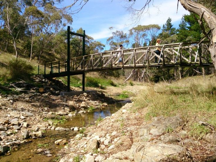 Omeo Oriental Gold Claims Ah Fong Loop Track (Omeo)