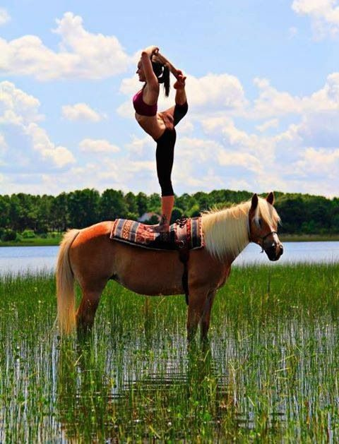 Horse and yoga
