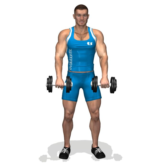 STANDING DUMBBELL UPRIGHT ROW INVOLVED MUSCLES DURING THE TRAINING TRAPS