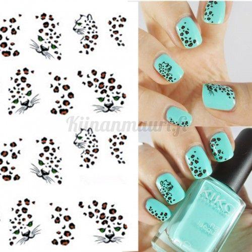 Leopardi kynsitarrat