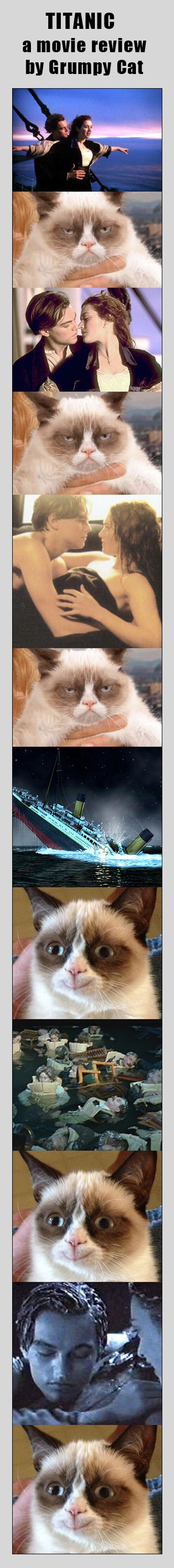 "Tard the Grumpy Cat reviews the Titanic movie (Please check out my ""Tard the Grumpy Cat"" board for more funny animal photos/ Tard the Grumpy Cat memes) #Tard #GrumpyCat #Funny"